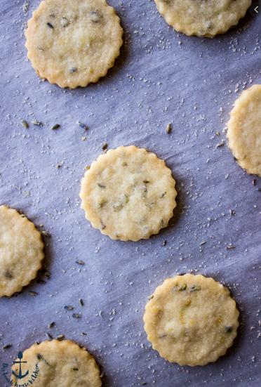 Lemon Lavender Cookie (Infused)