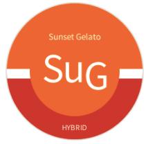 Sunset Gelato