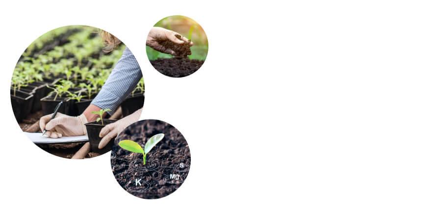 Soil Health Hub Background (2) (1).jpg