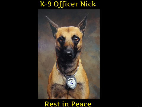 Plymouth Police Announce the Passing of K-9 Officer Nick, Brad Fox's Partner