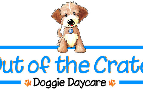 Conshohocken Gets Their First Doggie Day Care Facility