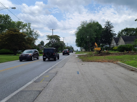 Trees Coming Down, The First Sign of Next Phase in Road Widening Project