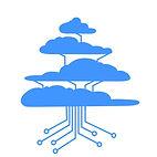 Cedar Cloud Copy 6 horiz Copy 3.jpg