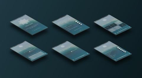 High-fidelity setup screens