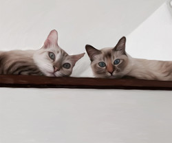 """Meeya and Mimi"