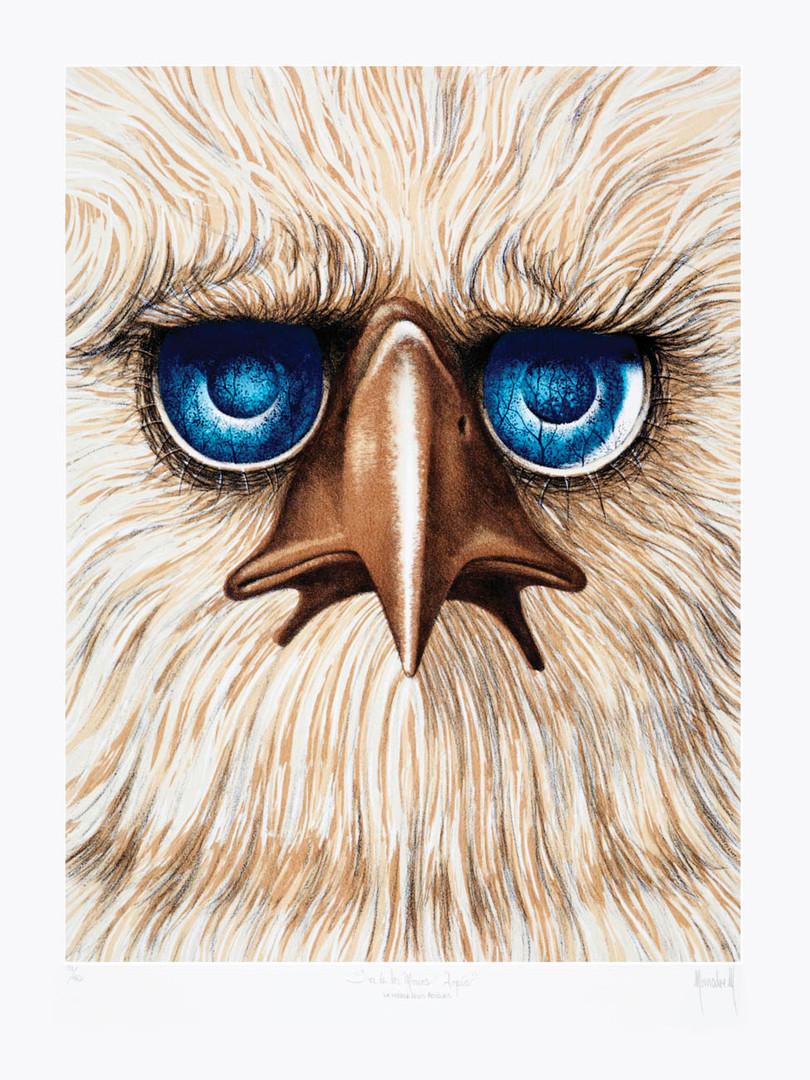 Águila arpia