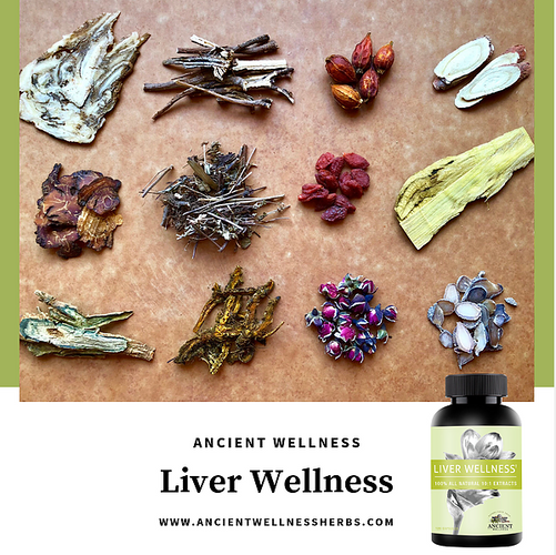 LiverWellnessWithHerbs.png