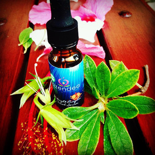 Be Well Series - The ageless beauty of the Facial Serum: Have you heard of the hype?