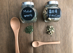 Herbal Series - Motherwort
