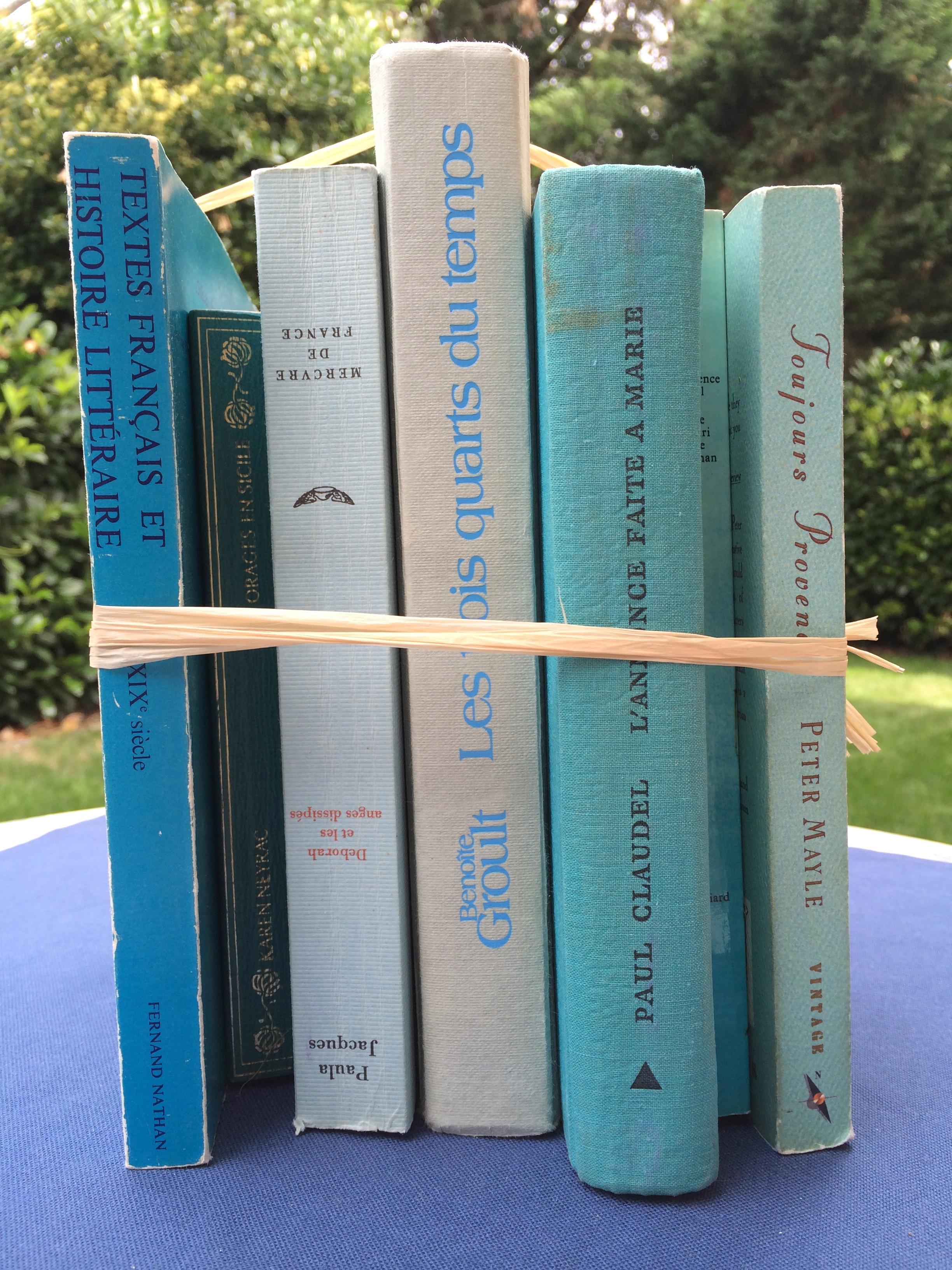 Livres turquoises