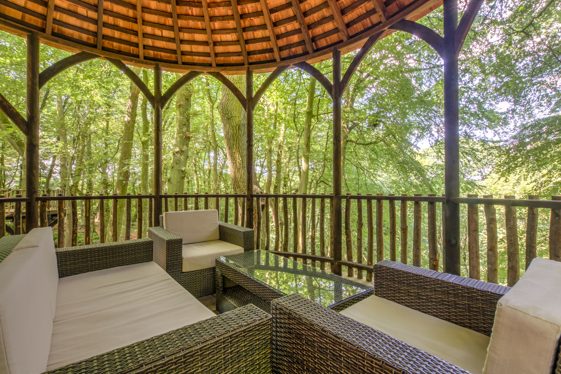 Relax in an ancient woodland