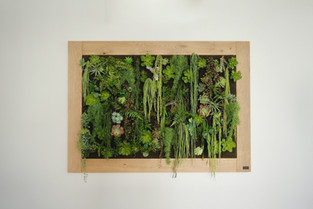 Tableau végétale by Séb et Nico