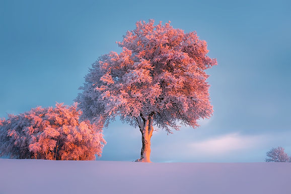 Frost, Air