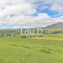 Lou D