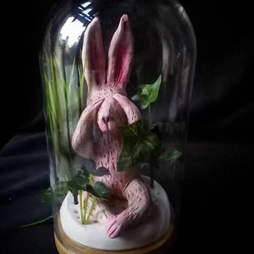 Coniglio nel giardino