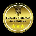 Experts Antiquaires diplômés de Belgique