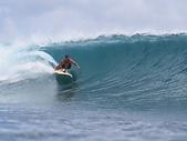 CARAFINO WAVE RIDER