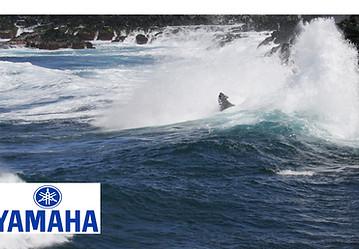 Yamaha Testing Maui, Mango.jpg