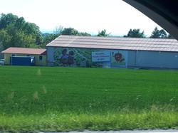 Banner XXXL für Halle Erdbeerhof Wunderl