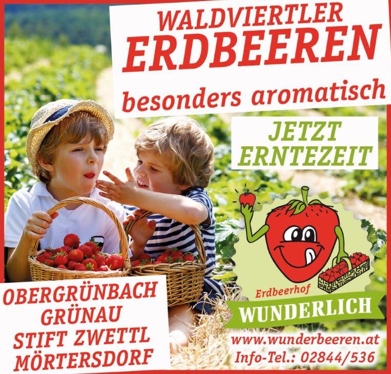 Anzeige Erdbeerhof Wunderlich