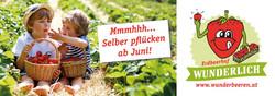 Banner Erdbeerhof Wunderlich