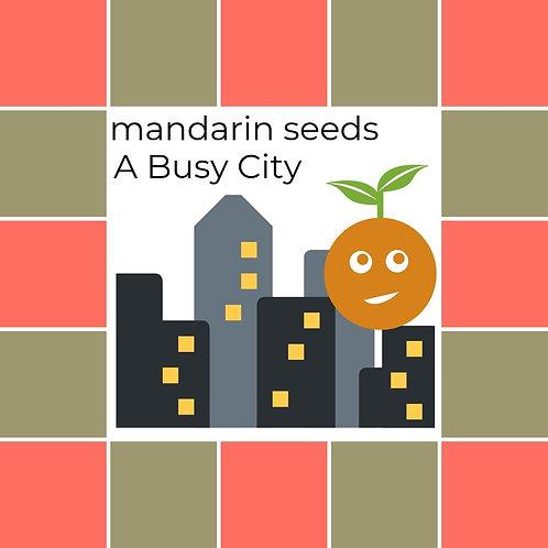 Summer 2019 Mandarin Seeds Album