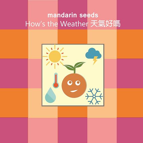 Spring 2019 Mandarin Seeds Album