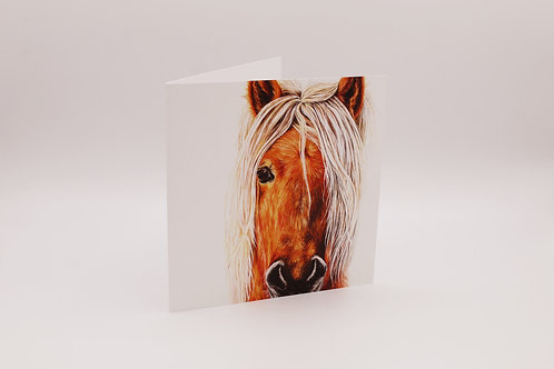 Pony greetings card