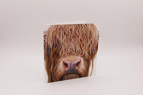 Highland cow greetings card