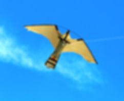 Peregrine Pro Bird Scare Kite