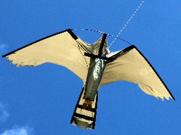 Replacement Peregrine Hawk -Kite only £40.50 + VAT