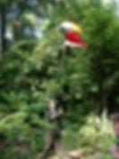 Jungle Marker Balloon