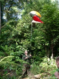 Jungle Marker Balloon