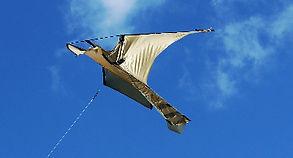Peregrine bird scare kite