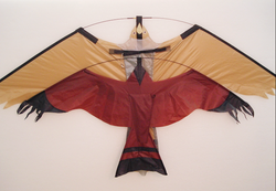 Peregrine Size vs Eco Kite