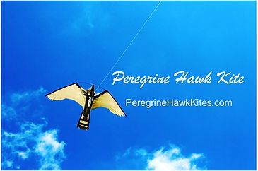 Contact for more information on bird control or hawk kites.