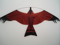 Eco Kite Front