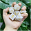 Thumbnail: Colossal White Polyhedral Dice Set