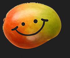 Bonbons bio vegan sans gluten mangue