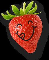 Bonbons bio vegan sans gluten fraise