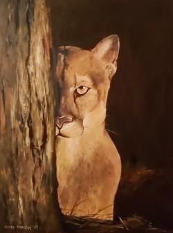 Puma-akril