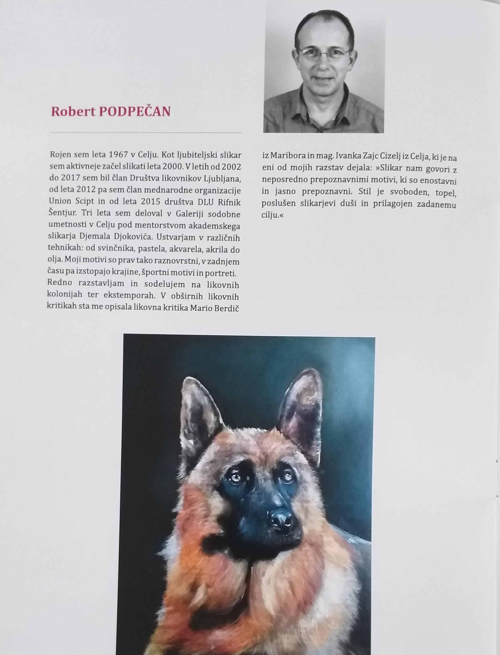 20 let DLU Rifnik 2