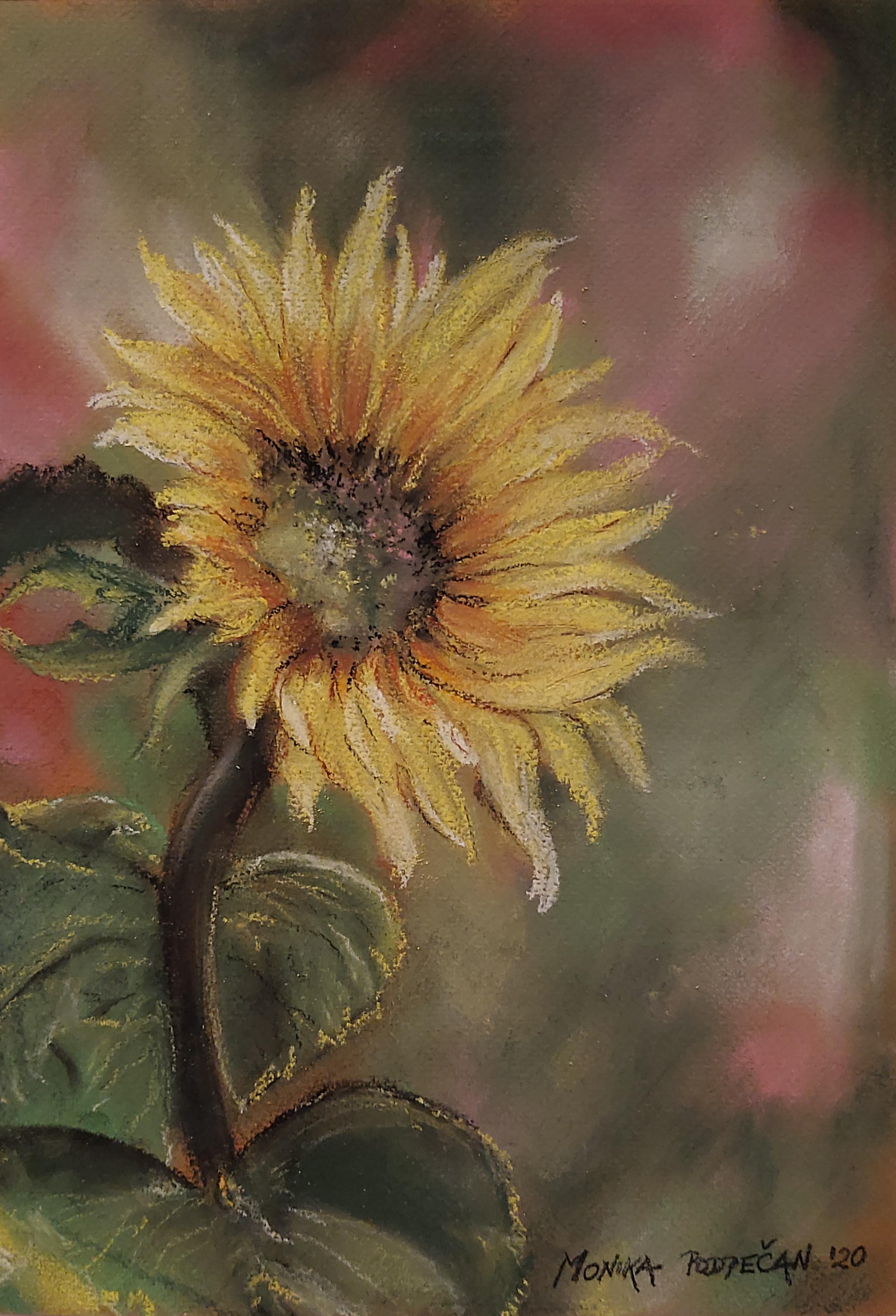 Sončnični cvet-pastel