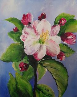 Jablanin cvet-akril
