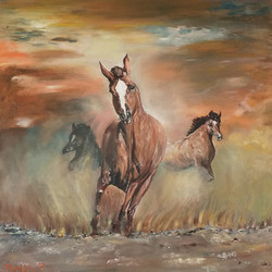 Divji konji-akril