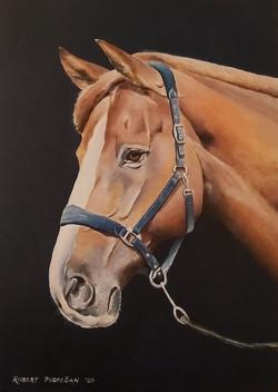 Konj 3-akril