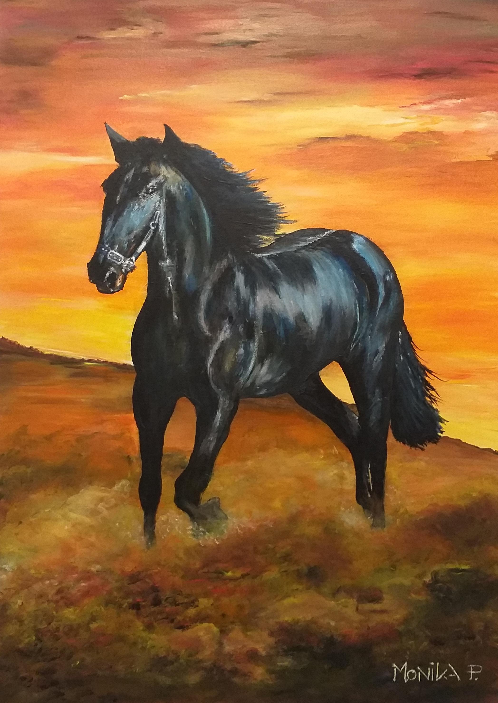 Konj-akril