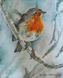 Ptiček-akril