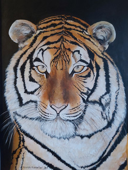 Tiger-akril