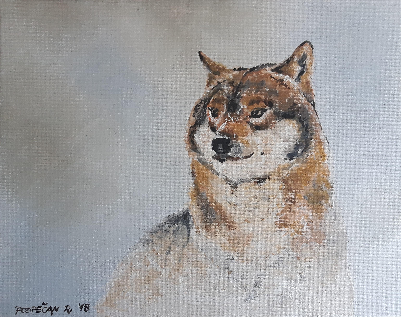 Volk-akril